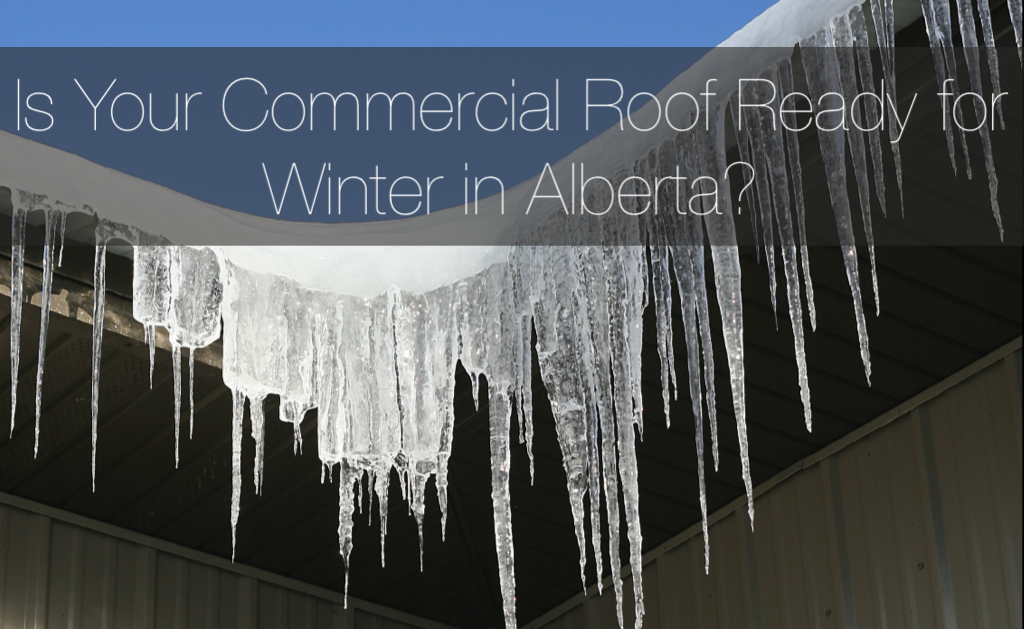 Protect Commercial Roof from Winter